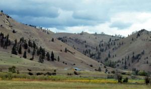 From I-90 West of Missoula